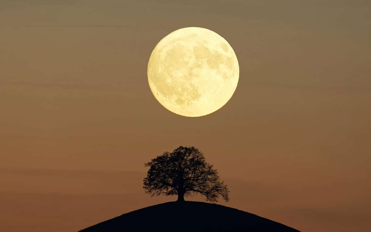 ماه کامل و شب چهاردهم
