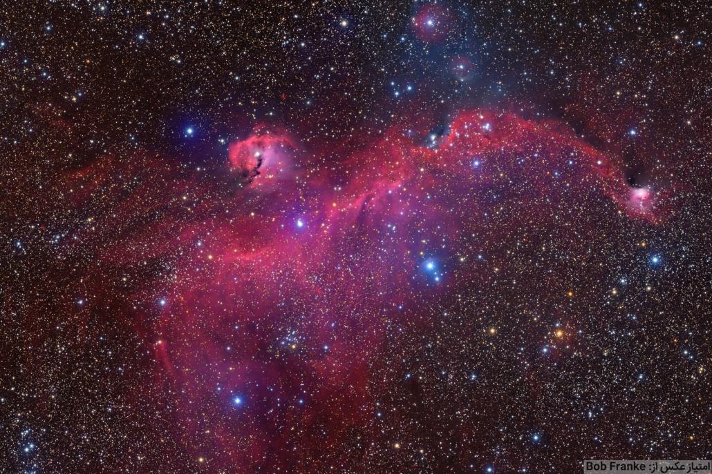 سحابی مرغ دریایی از دید تلسکوپهای آماتوری